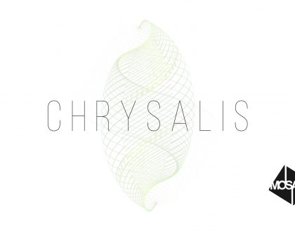 Chrysalis: Week 1