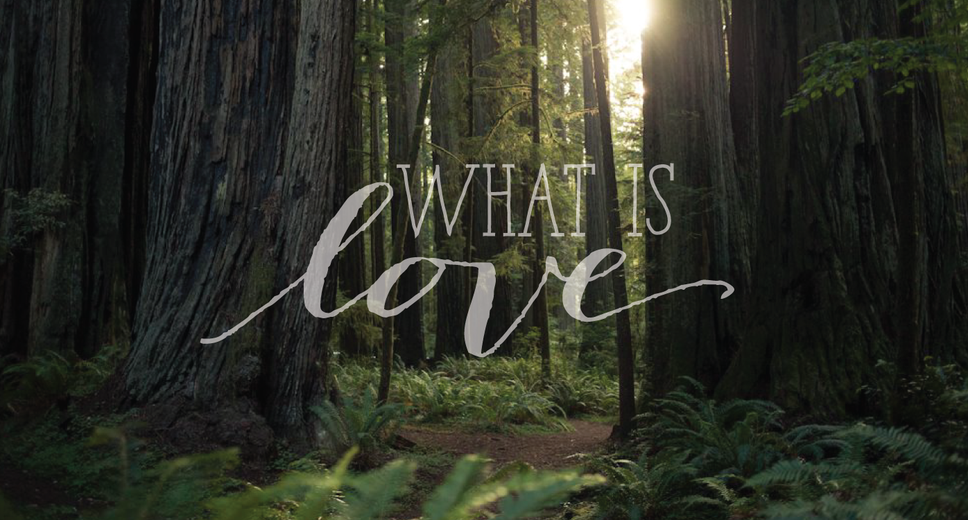 What Is Love: Love Is Home