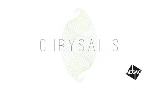 Chrysalis: Week 5